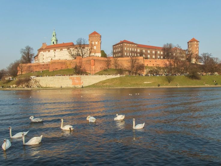 albday #Cracow #Wawelcastle
