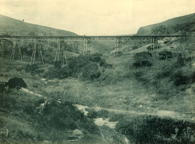 Inchanga Viaduct that was used from 1880 - 1892 and dismantled in 1896.  This photo shows the viaduct with the Inchanga Station behind the photographer.