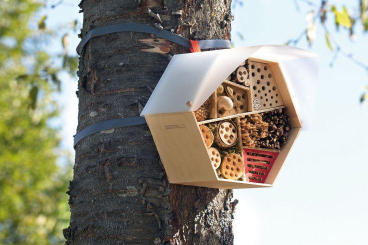 Haba Terra Kids hôtel à insectes