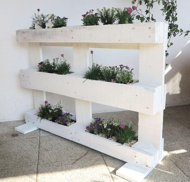 Ausgefallenes Urban Gardening