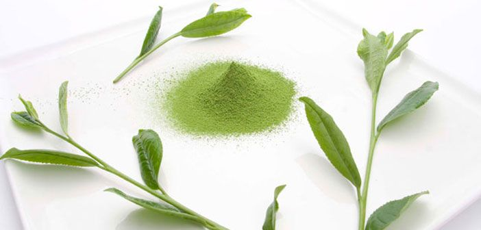 Health Benefits of Matcha: 5 Reasons to Add this Superfood to Your Daily…