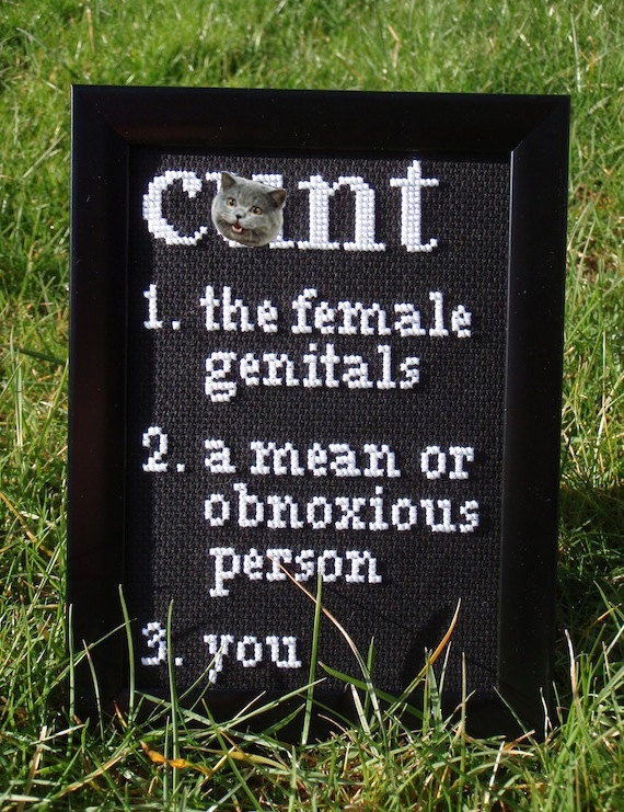 Definition Of A Cunt  framed cross stitch by doaflip on Etsy, $35.00