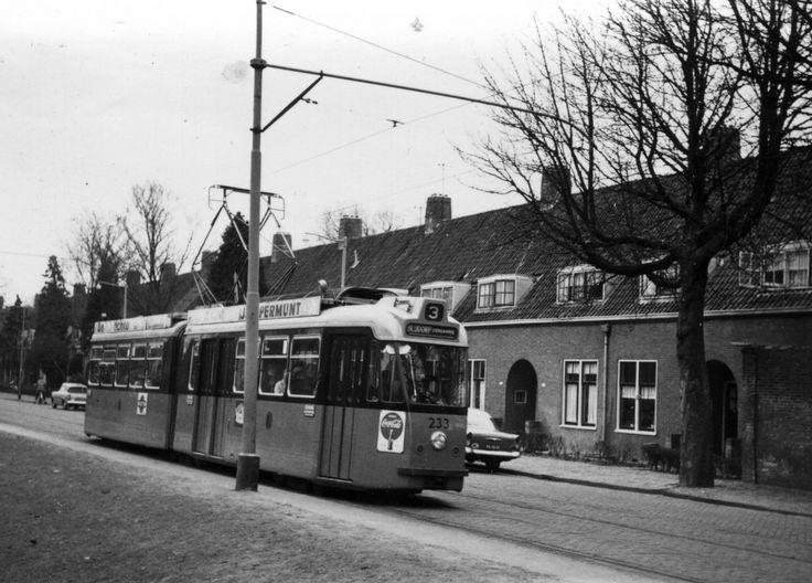 Langegeer 1962. Foto: T. van Eijsden.
