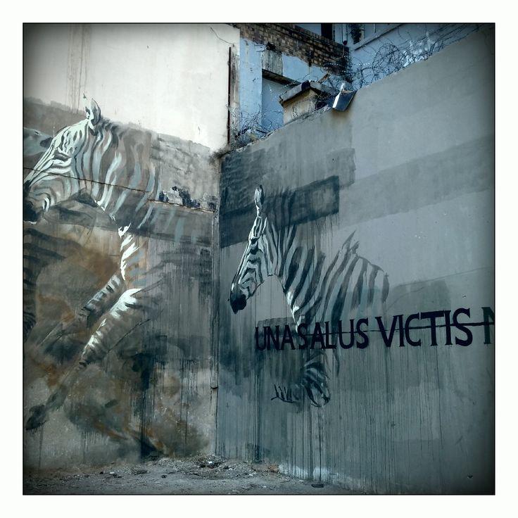 Joburg Street Art by artist Faith47. #Africa #SouthAfrica #Johannesburg #zebra #graffiti