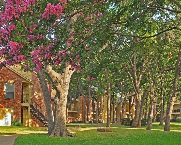 Sunridge Apartments Fort Worth Tx