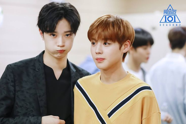 Guanlin: don't talk to my baby! Jihoon: *sighs* he's an idiot but he's my idiot