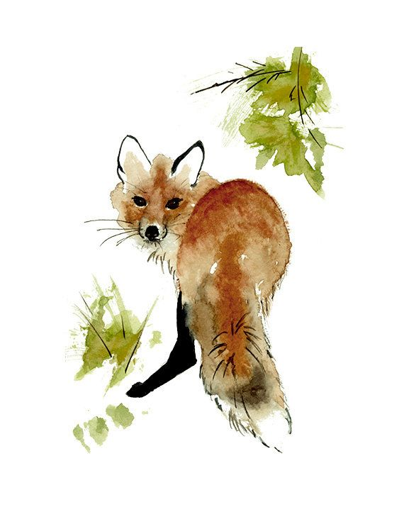 Red Fox Print from Original Watercolor Painting, Red Fox Illustration, Red Fox Painting Wall Art, Rustic Decor Wall Art