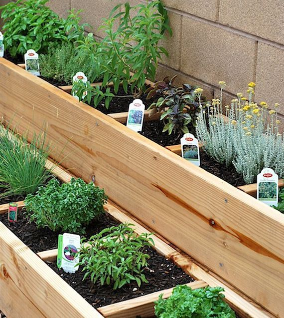Square foot garden success-great for the kitchen garden