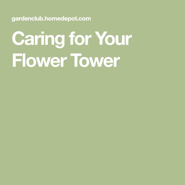 Caring for Your Flower Tower