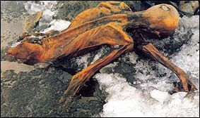 Otzi, the Ice Man of the Alps who was discovered in 1991.  His mummy, created by having been covered with glacial ice shortly after his death, is the oldest known human skin ever discovered – 5,300 years old – and it is tattooed.  Otzi has 59 separate tattoos