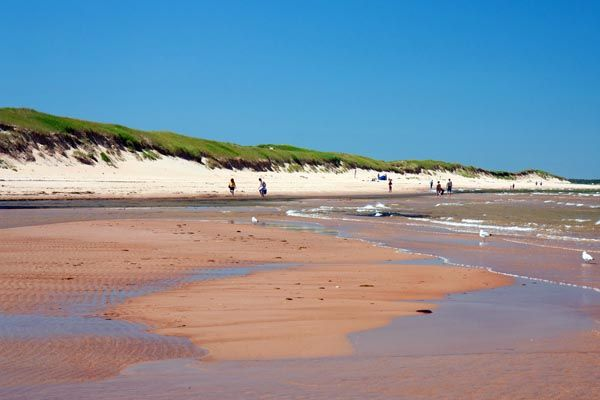 Greenwich Beach #PEI. Check out our list the best beaches in Eastern #Canada. #CanadianBeaches (Photo: Andrea Shaffer)