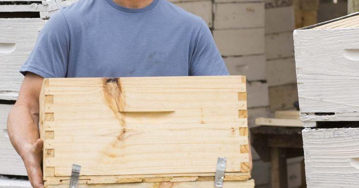 Cómo construir una caja de apicultor. La apicultura puede ser una afición y un modo de proveer un ingreso adicional. Las cajas de colmenas pueden construirse en casa para ahorrar el dinero que cuesta comprar una ya hecha. Las abejas son quisquillosas acerca de donde viven, así que asegúrate de tener las medidas correctas. Si estos insectos están infelices, no harán mucha miel, pero ...