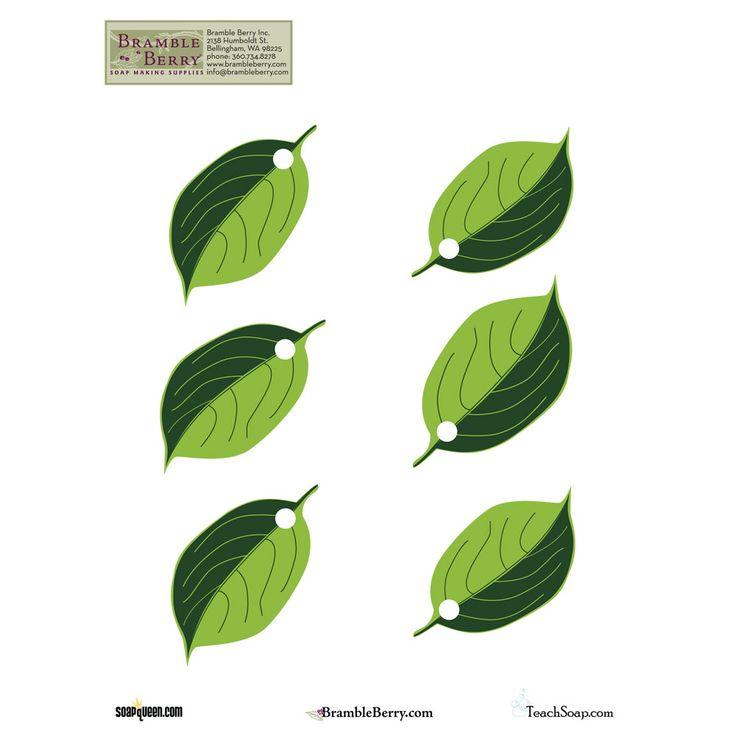 Best 25+ Leaves template free printable ideas on Pinterest Moana - editable leaf template