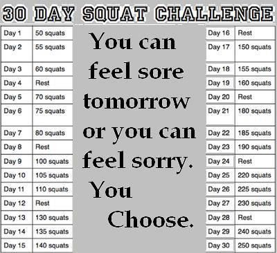 A Fitness Success Story ... 30 day squat challenge.  I need to try this!!!Squats Challenges, Squat Challenge, Fit Challenges, Squats Daily, Exercise, Fit Ideas, 30 Day Squats, Health, Workout