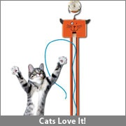 fling-ama-string auto string game for kitty $25