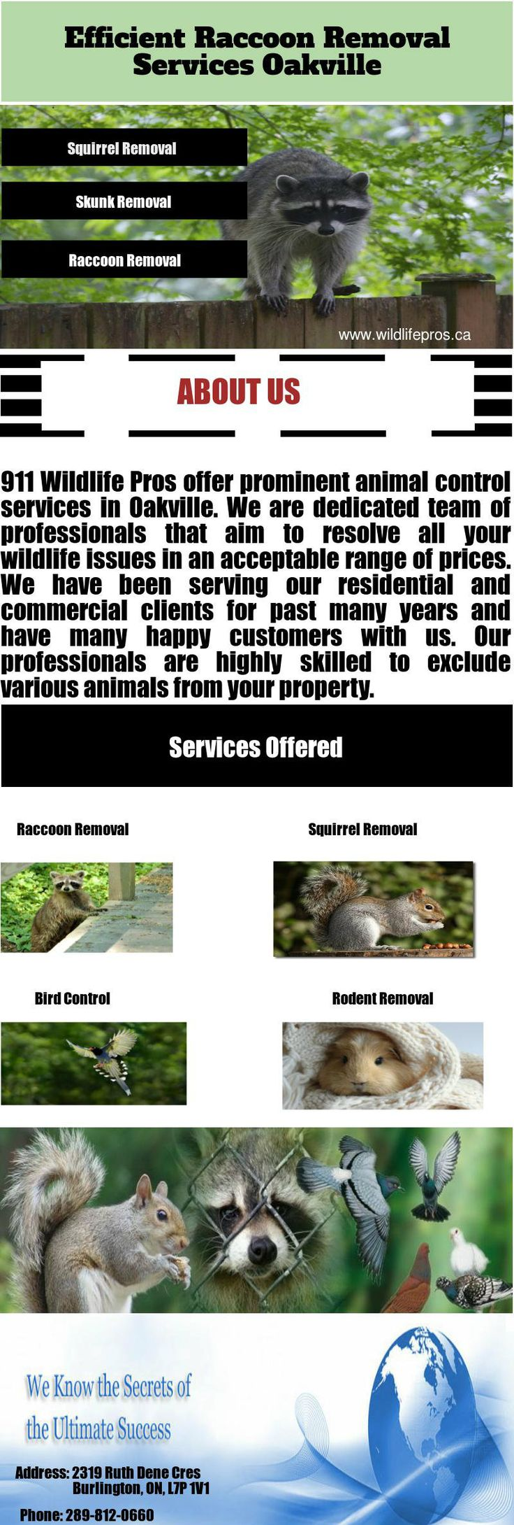 The animals that infiltrate into your residential or commercial sites can harm your property as well as can pose a serious threat to your family too. We at 911 Wildlife Pros offer superior animal removal services to our clients. We have years of experience and have solved numerous wildlife removal cases. Visit http://www.wildlifepros.ca/ to know further about our services.