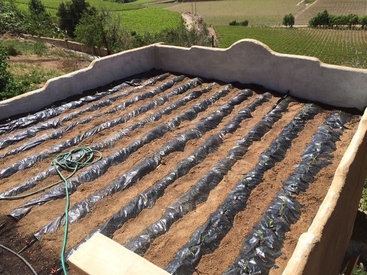 Huerta lista para ser plantada