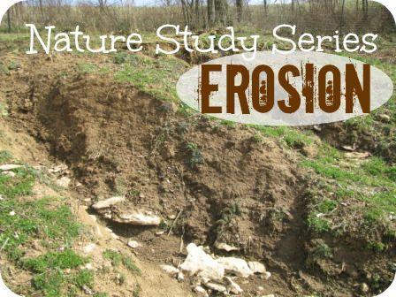 Erosion is a fantastic nature study topic!