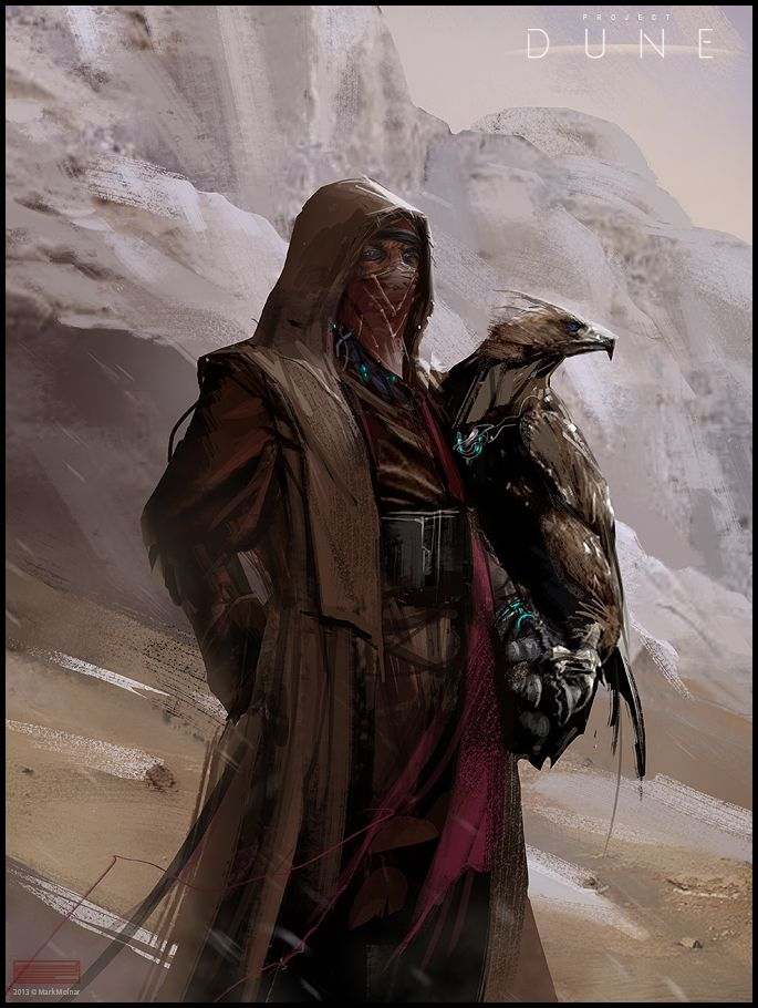 Mark Molnar - Sketchblog of Concept Art and Illustration Works: Project Dune - Fremen Eagle Hunter