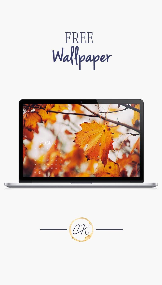 Fall leaves photo October calendar 2016 wallpaper you can download for free on the blog! For any device; mobile, desktop, iphone, android!