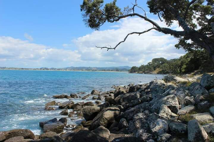 Ti Point - North Island, Nee Zealand