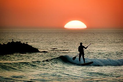 http://www.dreamstime.com/royalty-free-stock-photo-paddle-board-surfer-sunset-image43453265