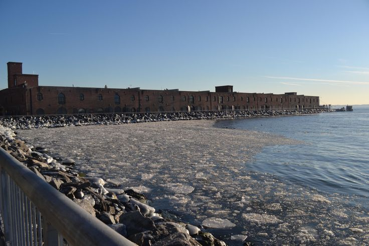 The 2013 polar vortex was so cold it created sea ice at Red Hook.