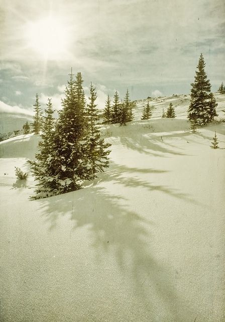 holy mother Colorado. I can't wait to visit you this Christmas