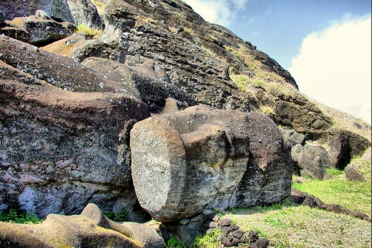 Varios moais caídos y otros en proceso de tallado, dentro de la cantera del volcán Rano Raraky