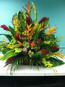 Loving this tropical statement piece!