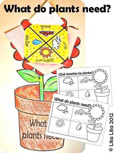 What do plants need? English and Spanish