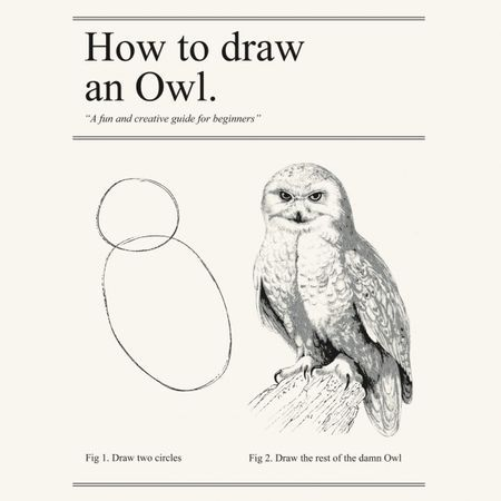 How to draw an owl  The problem with most business and leadership advice is that it's a little like this
