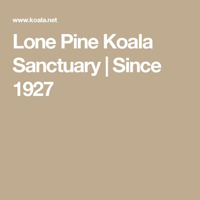 Lone Pine Koala Sanctuary | Since 1927