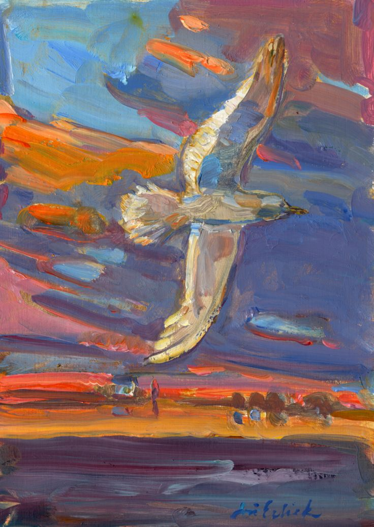 gull sunset  a study *in a private collection