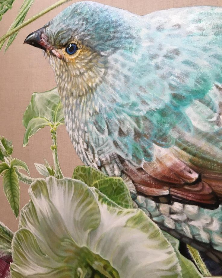 In my studio contemplating the delicate hue of the female bowerbird evokes the qualities of jade: wisdom balance and peace. In past millenia the Chinese regarded jade as crystallised moonlight fallen down to earth from the heights of the holy mountains.  Detail from my painting Jade Bird of Dreams and Tranquility 2015 oil on linen 192x252cm  http://ift.tt/2tw3w8c - #gatesofparadise #annemiddleton #gbartconsulting #botanicalart #floriography #contemporaryart #australianart #bowerbird #jade