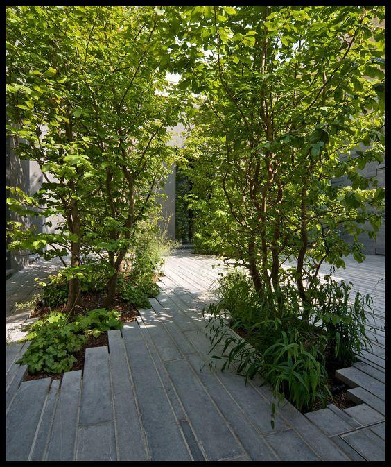 """houblon: """"La casa tra gli alberi by Studioata. Photo: © Beppe Giardino """""""