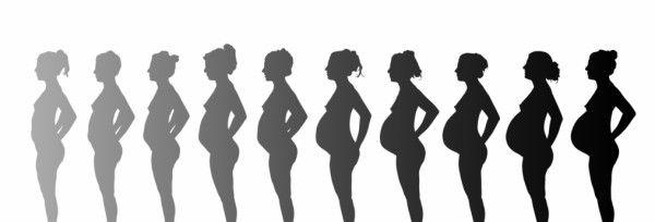 dos formas de calcular las semanas de tu embarazo.
