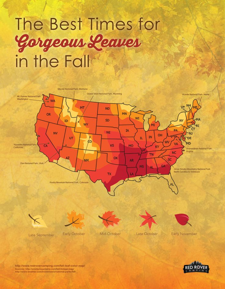 The Best Times For Gorgeous Leaves In The Fall Red Rover Camping Plan Your Fall
