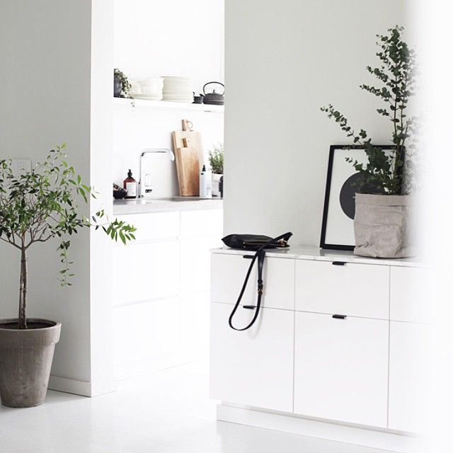 "Gefällt 1,493 Mal, 34 Kommentare - Elisabeth Heier (@elisabeth_heier) auf Instagram: ""Decorating with plants on the blog today  #greenlove #elisabethheiershome #newblogpost"""