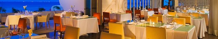Riviera Maya Mexico Resorts Dining Cocina de Autor