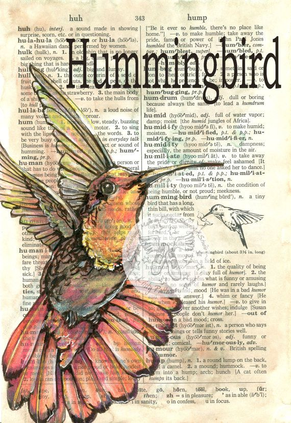 6 x 9 Print of Original, Mixed Media Drawing on Distressed, Dictionary Page    This drawing of a hummingbird is drawn in sepia ink and created with