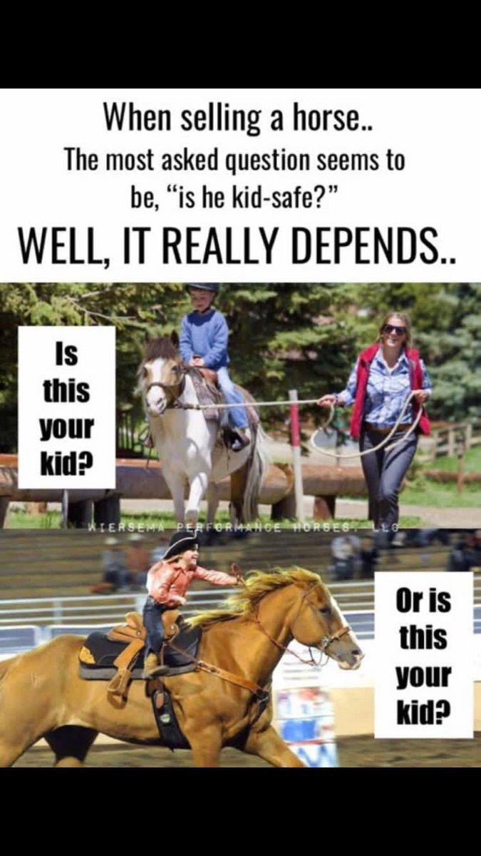Pin By Izzy On Horses Horse Quotes Kids Safe This Or That Questions