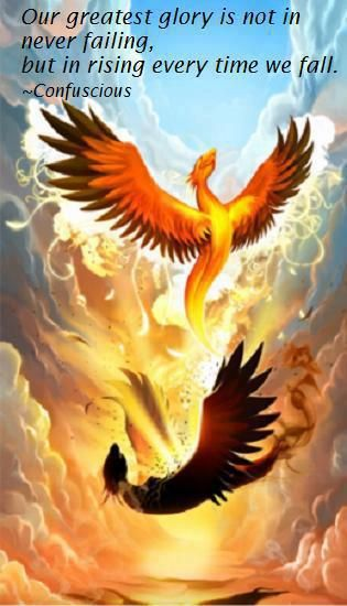 the Phoenix should make the greatest symbol for fibromyalgia.  In reality, we burn our previous life to become a Fibromyalgiac.  It is a violent change, but we are still very beautiful.