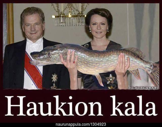 Haukion kala - hauskat kuvat - Naurunappula