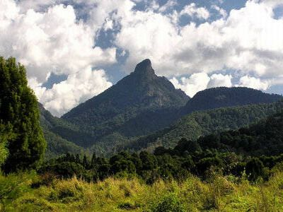 Mount Warning Walk - The area offers unlimited possibilities for the tourist to enjoy. The Tweed River and other streams have eroded the central explosion crater making the area larger an leaving an island of more acid lava rock dome known as Mount Warning.