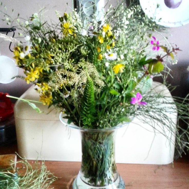 Kwiaty z lasu z Zabratówki#bukiet#miotła#kwiaty#kompozycjałubudubu#wildflowers#