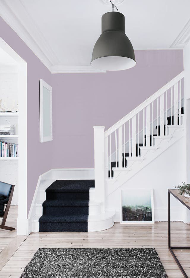 dark carpet up stairs