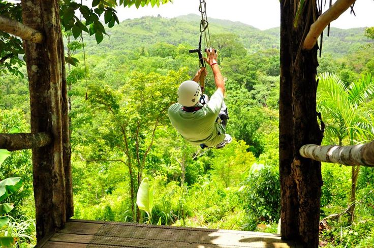 As with all things in life, it takes courage to make it to the top.  Conquer your fear of heights with a zipline tour through the treetops of a tropical rainforest, or hike to the Blue Mountain peak for a bird's eye view of Kingston. #visitjamaica
