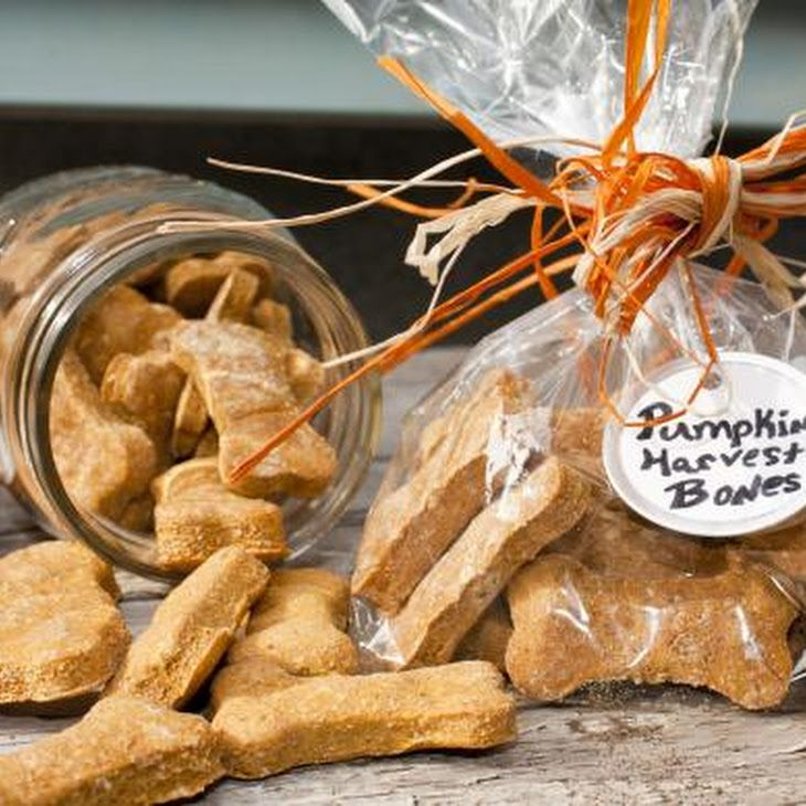 Pumpkin Dog Biscuits Recipe. Homemade is better, fresher and cheaper!