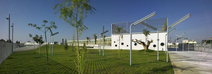Colegio Público. Torre Pacheco